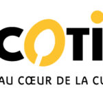 Cocotine